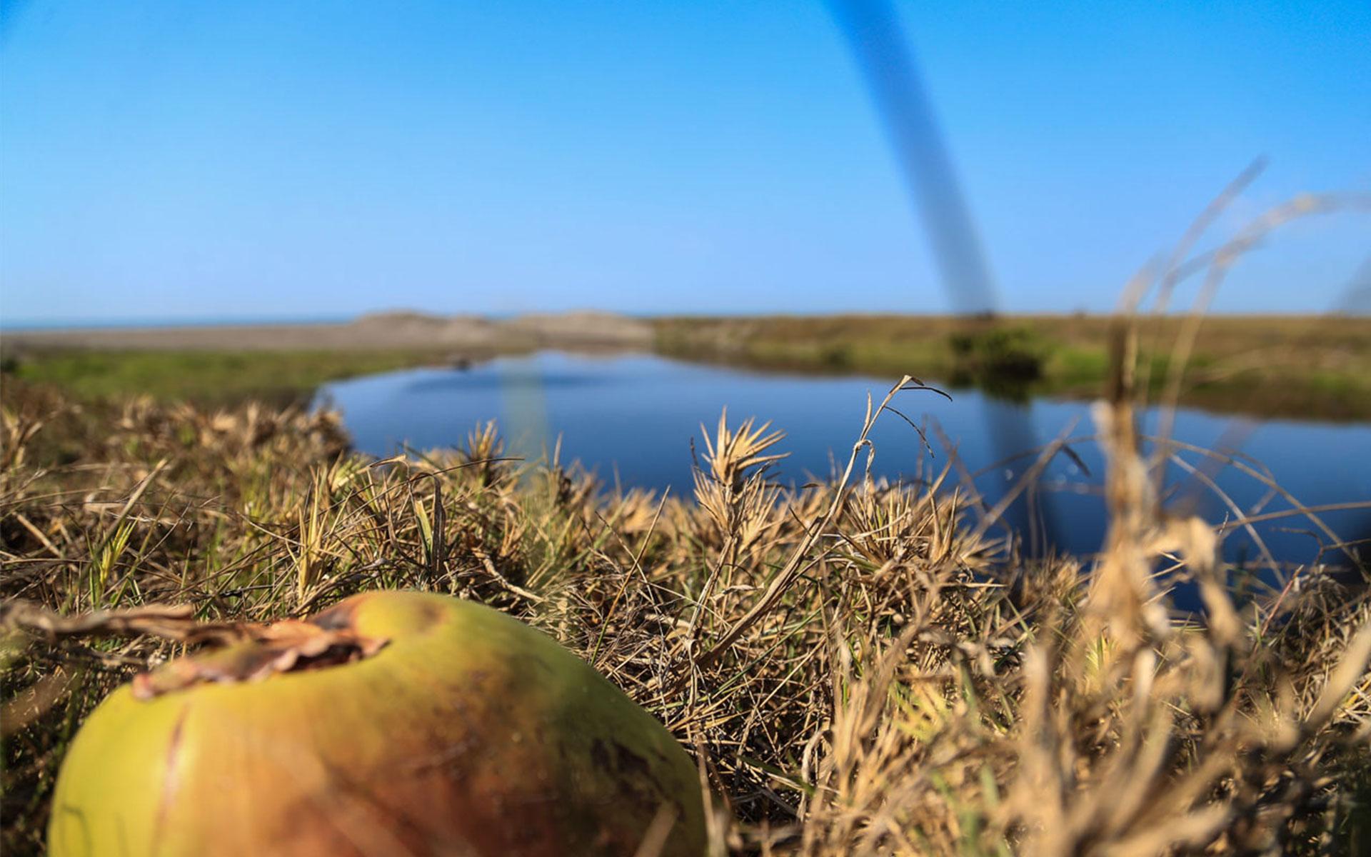 Disfruta de la laguna natural